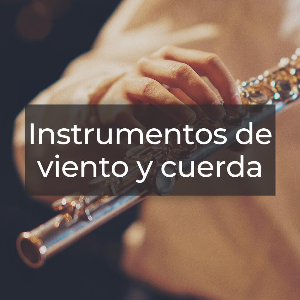 Instrumentos de viento y cuerda